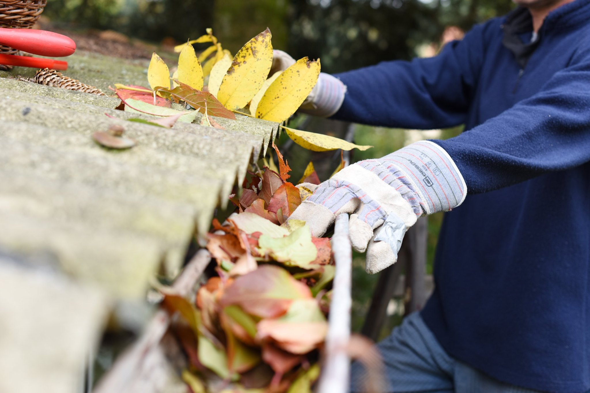 Gutter Cleaning Services in Cincinnati, OH