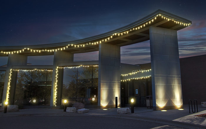 Professional Christmas Decorators in Plymouth, MN