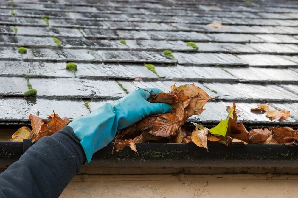 Midwest Gutter cleaning service