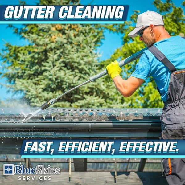 Gutter Cleaning Services in Minneapolis, MN